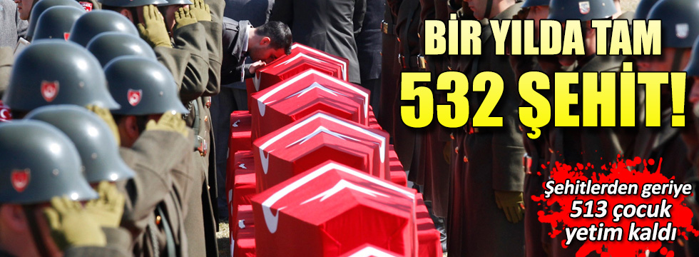 Bir yılda 532 şehit verdik!