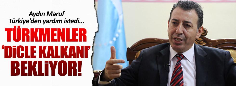 Iraklı Türkmenler 'Dicle Kalkanı' istedi