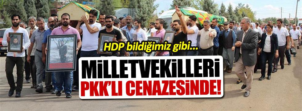 HDP'liler PKK'lı cenazesinde