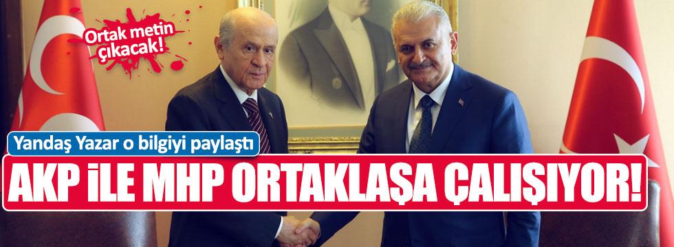 Serpil Çevikcan: MHP ile AKP Başkanlık için ortak metin hazırlıyor