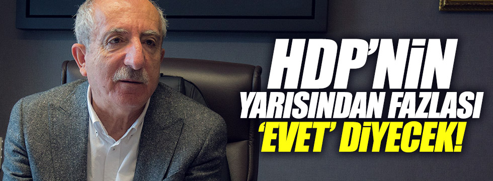 """Miroğlu: """"HDP'nin yarısı 'evet' diyecek"""""""