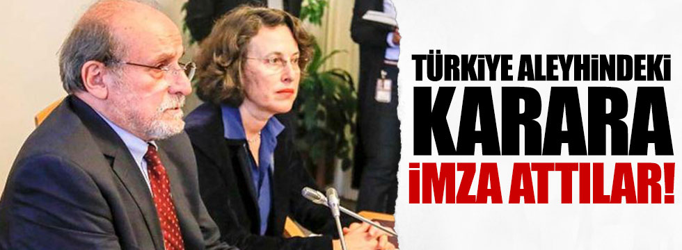 İki HDP'li vekil Türkiye aleyhinde oy kullandı
