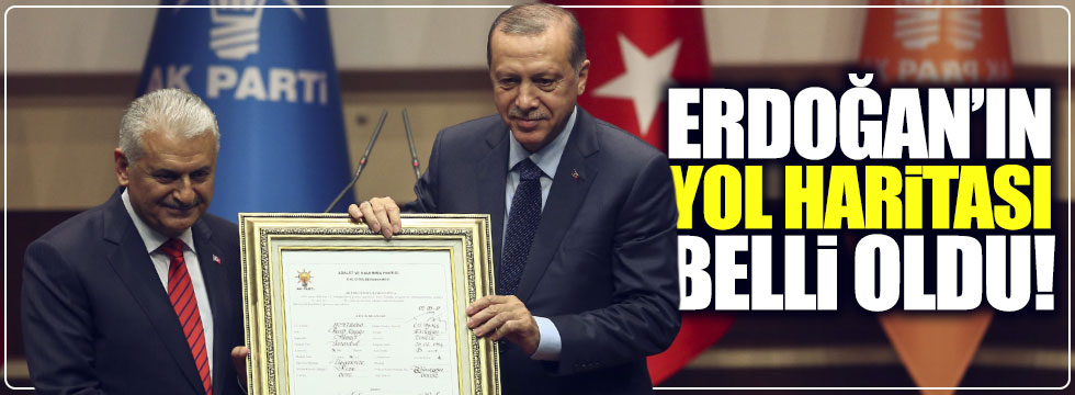 Erdoğan AKP'ye genel başkan olduktan sonra ne yapacak?