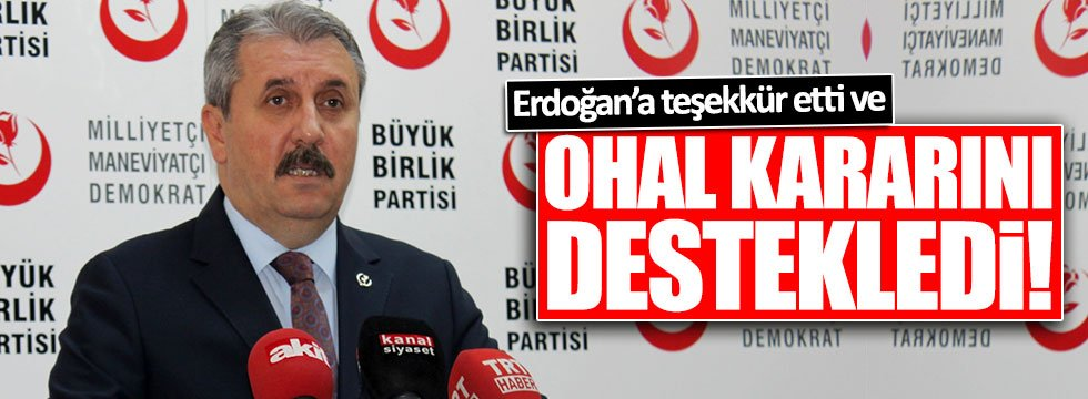 Destici: OHAL'i destekliyorum