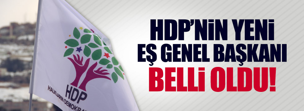 HDP'nin yeni Eş Genel Başkanı belli oldu