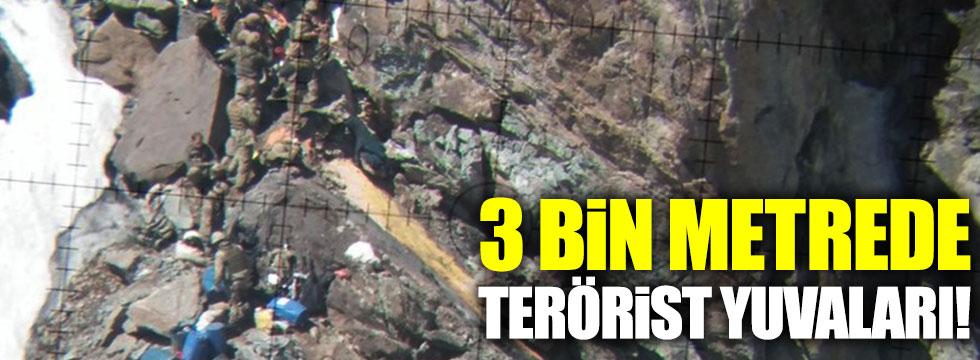 Asker Yüksekova'da 3 bin metrede buldu fotoğrafları paylaştı