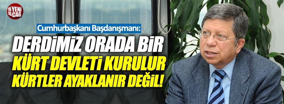 """Çevik: """"Derdimiz orada bir Kürt devleti kurulur, Kürtler ayaklanır değil"""""""