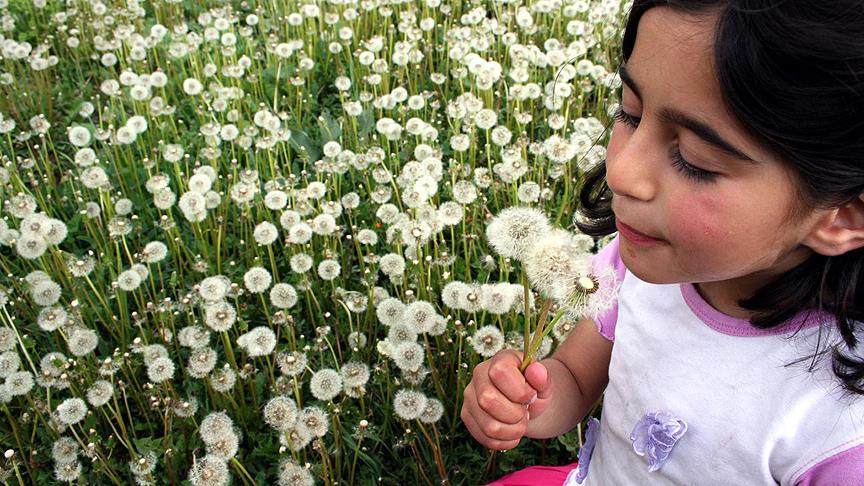 Her 10 çocuktan birinde 'polen alerjisi' var
