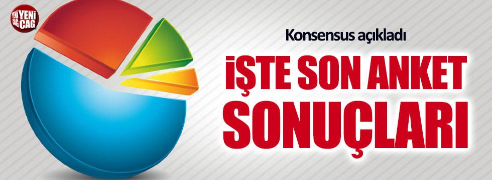 Anket sonuçları açıklandı! İşte Akşener, Erdoğan ve İnce'de son durum