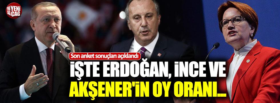 İşte, Erdoğan, İnce ve Akşener'in oy oranları