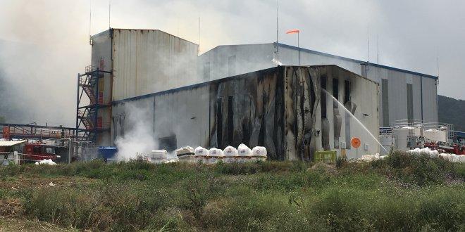 Yalova'da kimya fabrikasında yangın
