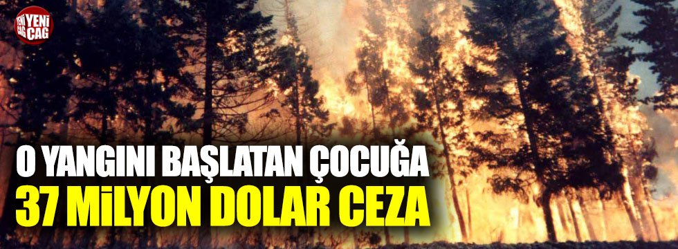 Orman yangını başlatan çocuğa 37 milyon dolar ceza