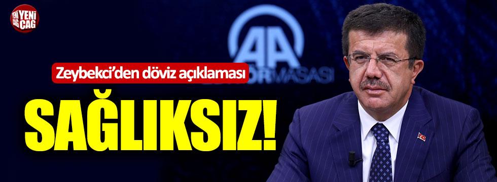Ekonomi Bakanı Zeybekci'den döviz açıklaması