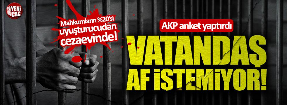 AKP anket yaptırdı, vatandaş 'uyuşturucu affı' istemiyor!