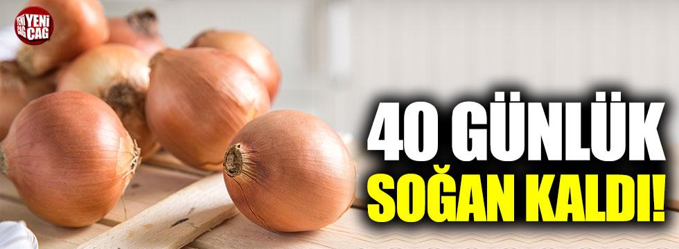 40 günlük soğan kaldı!