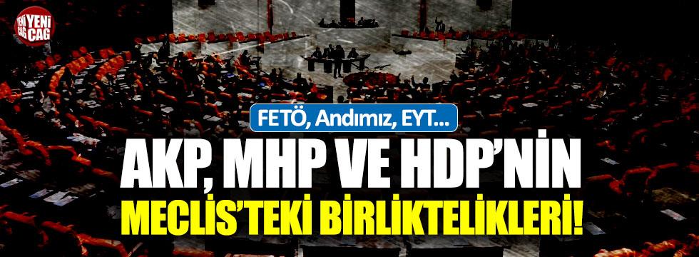 AKP, MHP ve HDP'nin Meclis'teki birliktelikleri