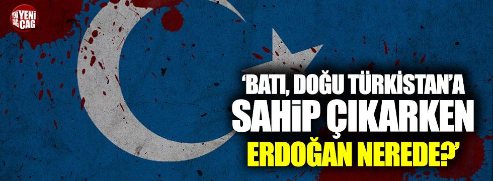 ''Batı, Doğu Türkistan'a sahip çıkarken Erdoğan nerede?''