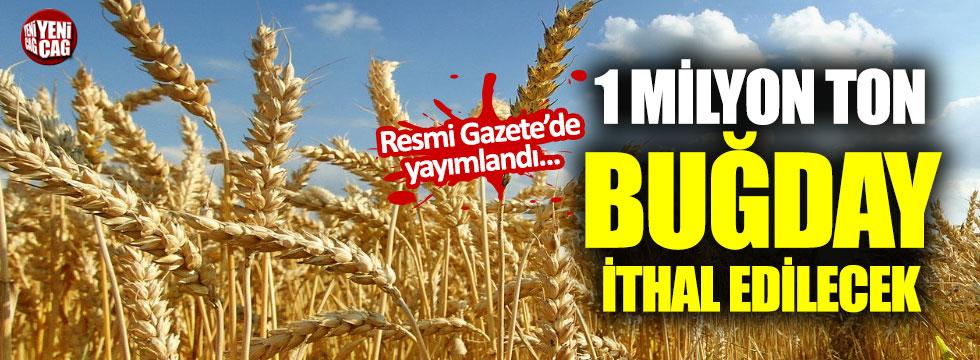 TMO 1 milyon ton buğday ithal edecek