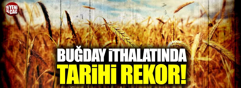 Buğday ithalatında tarihi rekor!