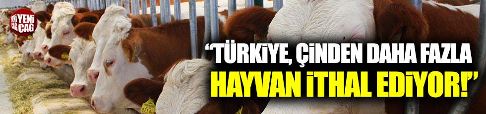 """""""Türkiye, nüfusu 1.4 milyar olan Çin'den daha fazla hayvan ithal ediyor"""""""