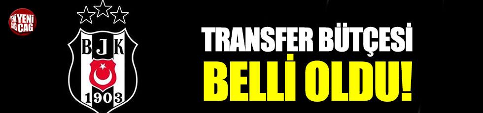 Beşiktaş'ta transfer bütçesi belli oldu