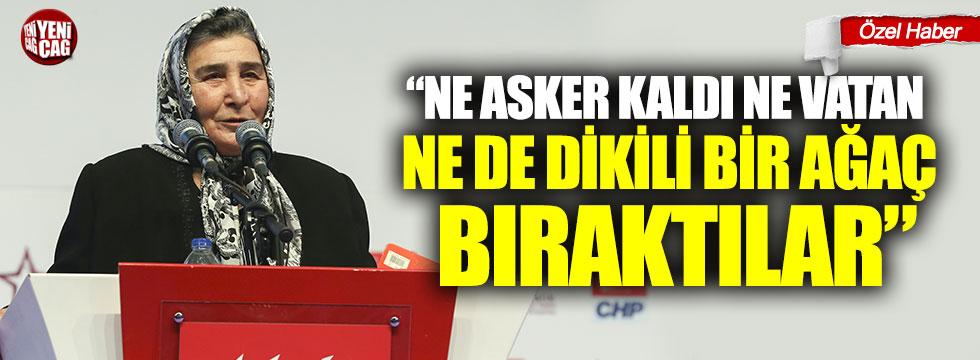 Pakize Akbaba'dan iktidara Öcalan tepkisi