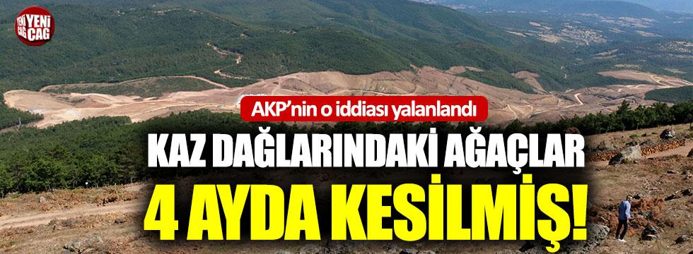 Kaz Dağları'ndaki ağaçlar 4 ayda kesilmiş!