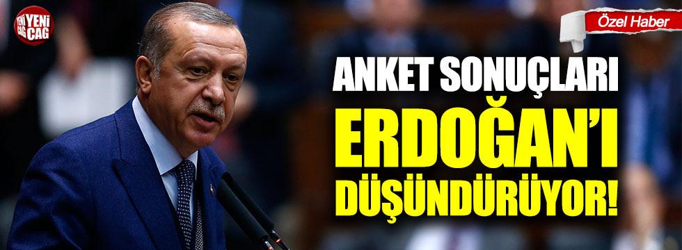 Anket sonuçlarında son durum! İYİ Parti, CHP, AKP, MHP...