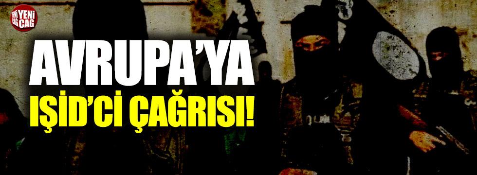 ABD'den Avrupa'ya IŞİD'ci çağrısı