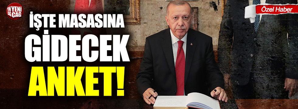 İşte Erdoğan'ın masasına gidecek anket!
