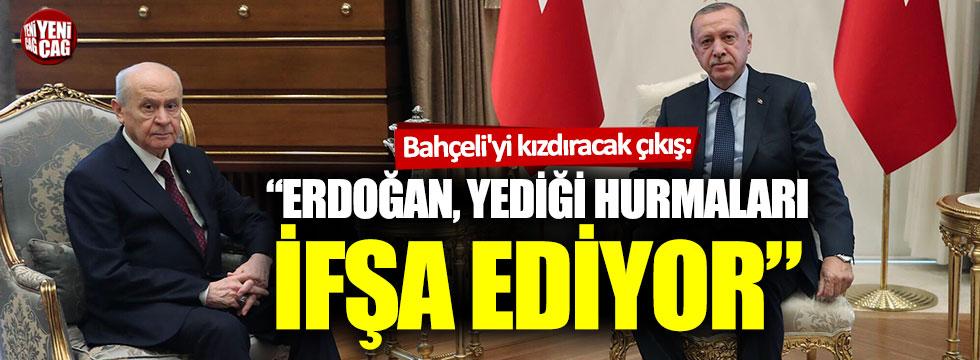 Devlet Bahçeli'yi kızdıracak çıkış: Erdoğan yediği hurmaları ifşa ediyor