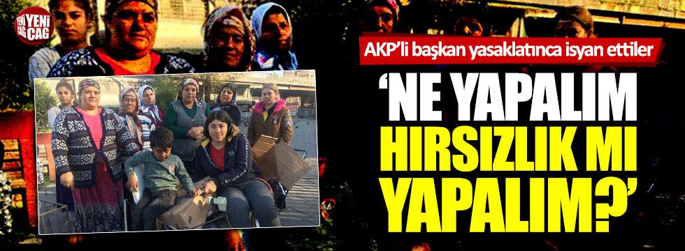 AKP'li Ömer Selim Ayan karton toplamayı yasaklattı