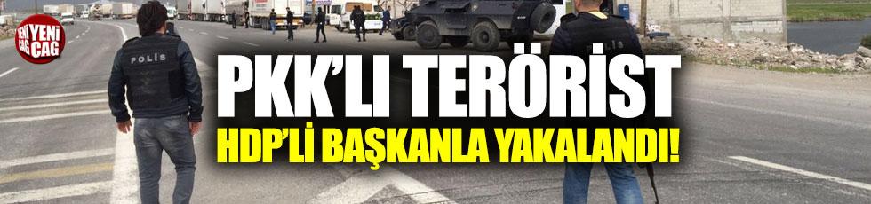 PKK'lı terörist, HDP ilçe başkanıyla kaçarken yakalandı!