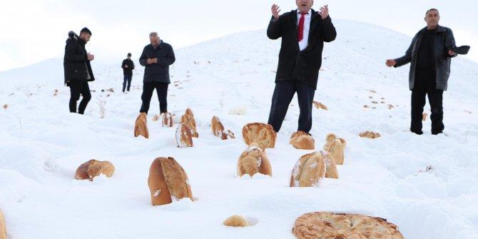 Doğaya 101 ekmek bıraktı