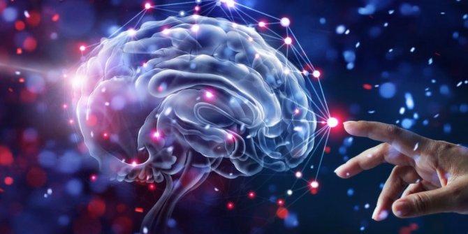İnsan beyninde yeni tür bir sinyal keşfetti
