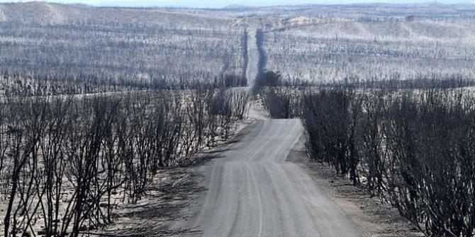 İklim değişikliği doğa olaylarını sıradanlaştırıyor