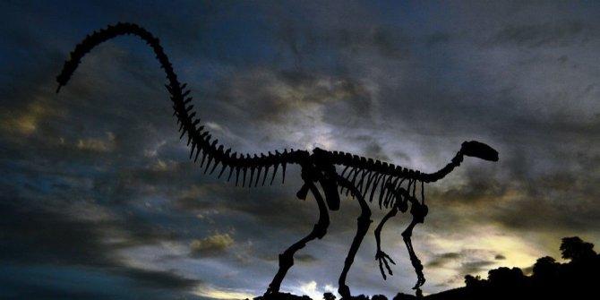 Dinozorlar neden yok oldu?
