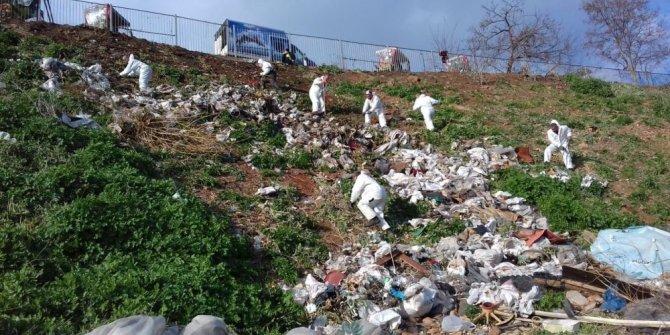 Adalar'da faytonların ardından 25 ton atık toplandı