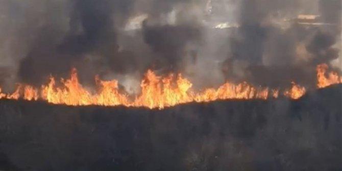 Sazlık alanda korkutan yangın!