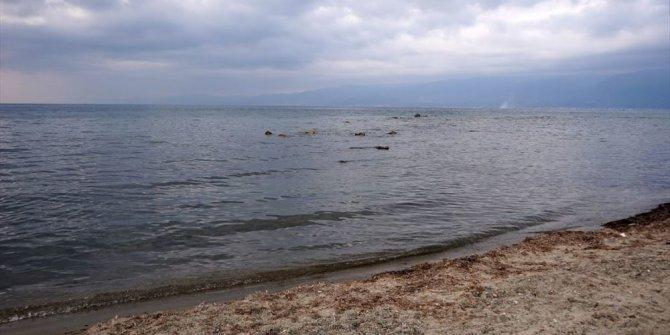 Balıkesir'de deniz suyu 2 metre çekildi