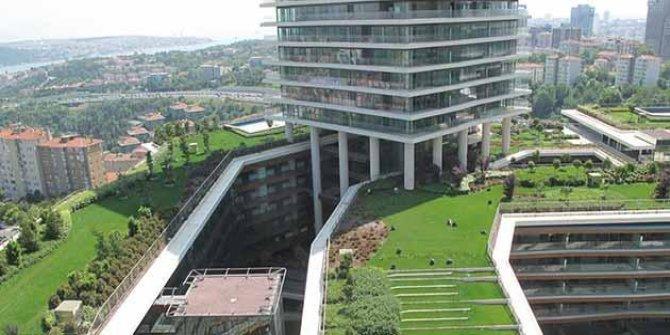 İstanbul 'Yeşil Çatı' projesiyle yeşillenecek