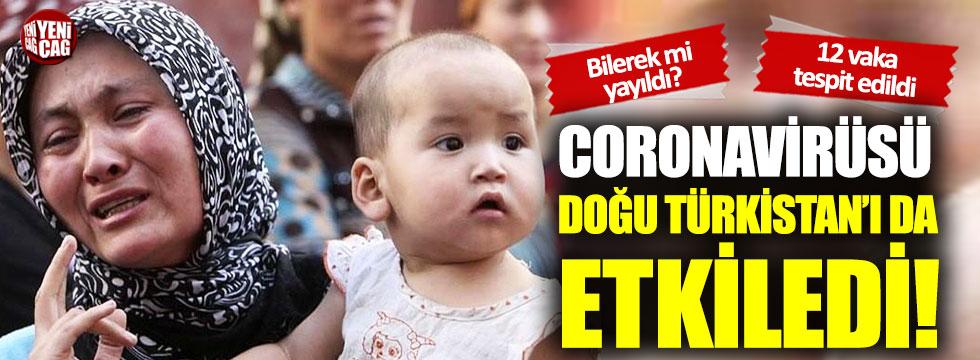 Coronavirüsü Doğu Türkistan'ı da etkiledi!