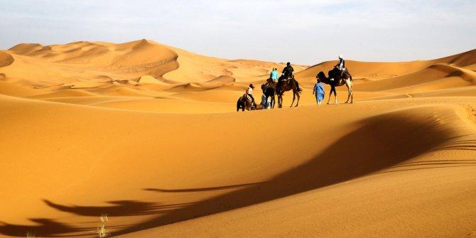 Sahra Çölü'nde dikkat çeken araştırma