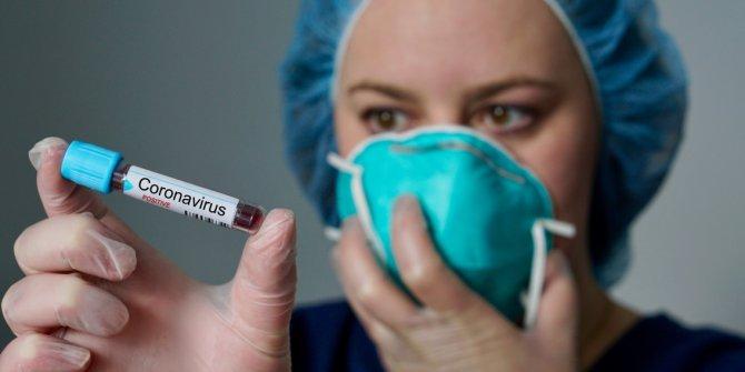 Japonya'da coronavirüsü nedeniyle sosyal hayata 2 hafta ara
