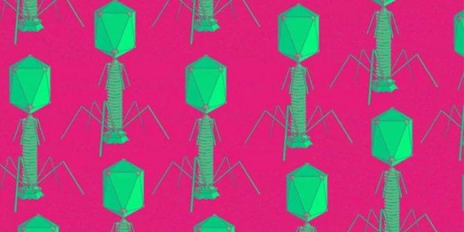 Bilim insanları virüsleri kullanarak pil geliştirdi