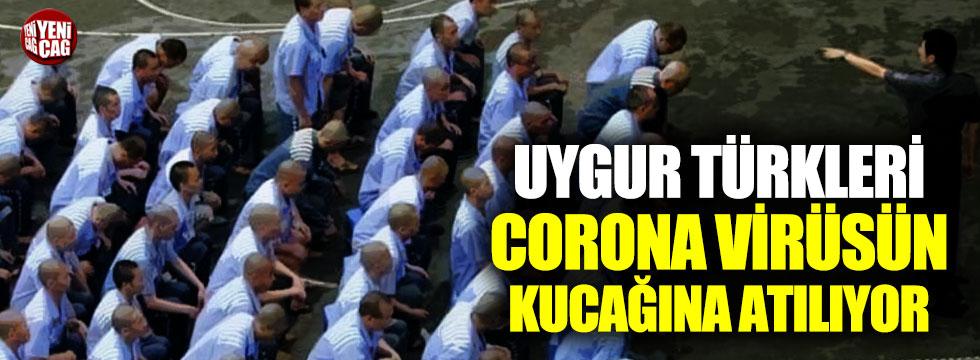Çin Uygur Türklerini corona virüsün kucağına atıyor