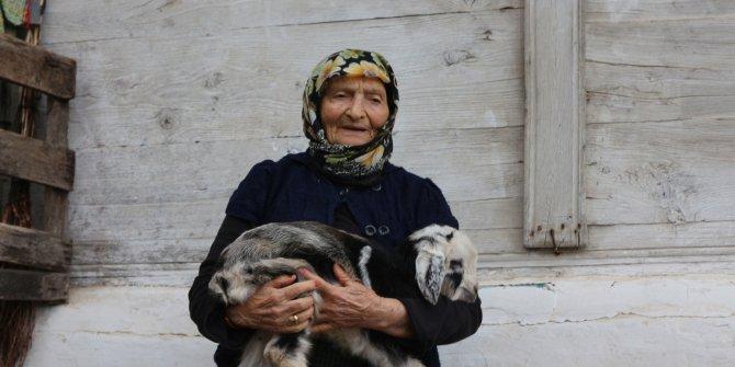 Rize'de köylerde koronavirüs sessizliği