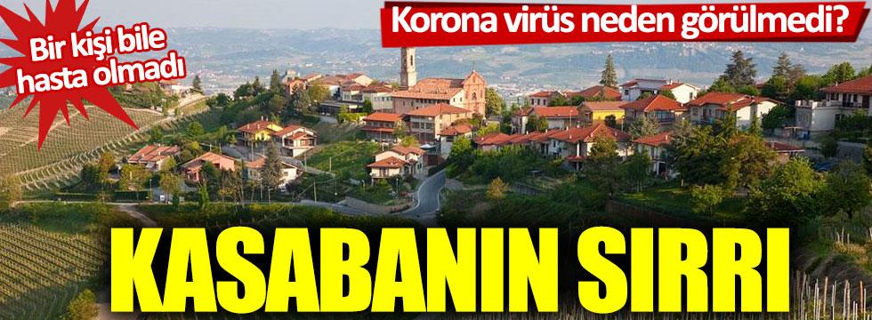 Korona virüs hiç görülmedi: Bu kasabanın sırrı ne?
