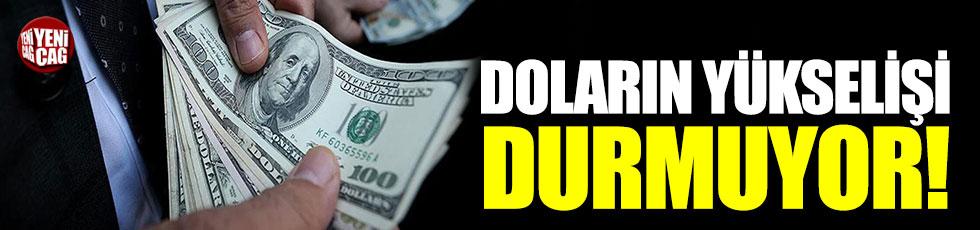 Dolar'ın yükselişi durmuyor!