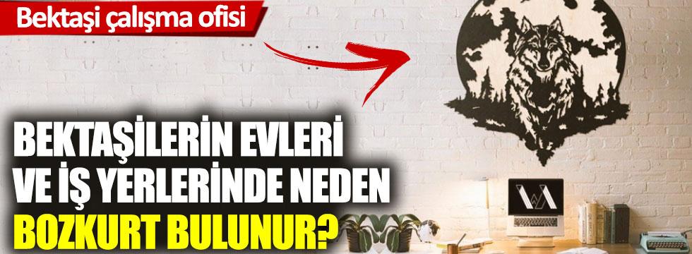 Bektaşilerin evleri ve iş yerlerinde neden Bozkurt bulunur?